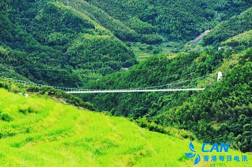 一座桥 激活了一个村的产业发展
